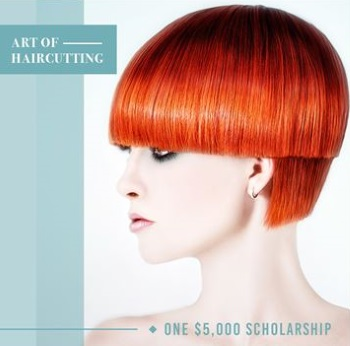 Art of haircutting scholarship